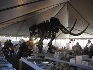 Tucson 2012 030