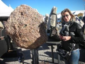 Tucson 2012 050